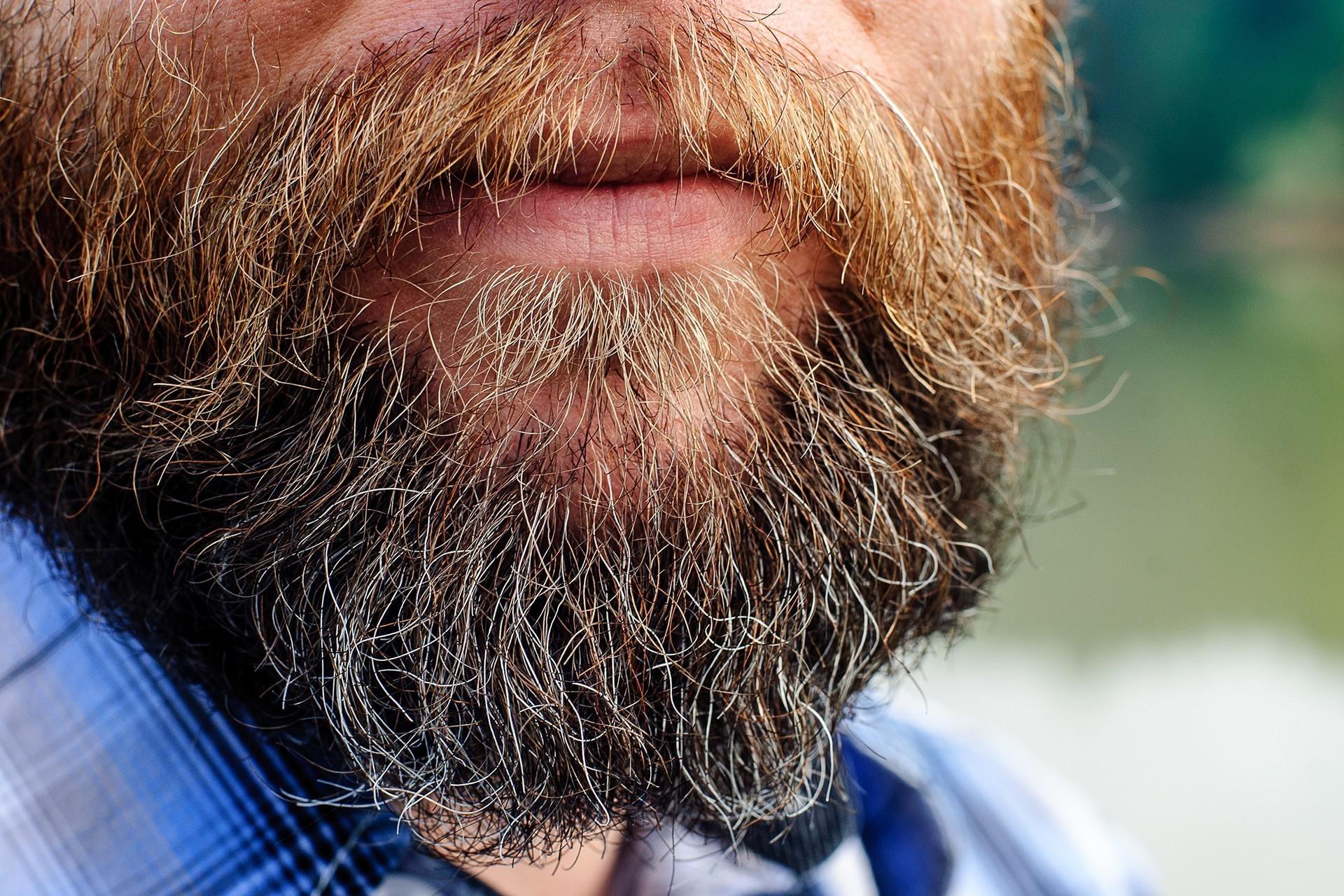 Femeile care cauta barba? i Abitabi)